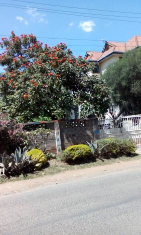 Снимка 5, Найроби, Кения