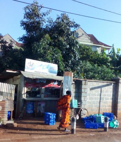Снимка 7, Найроби, Кения