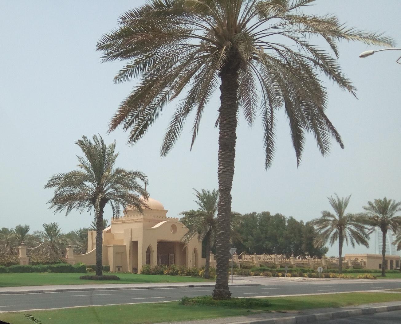 Снимка 1, Къщите - дворци на елита на Дубай