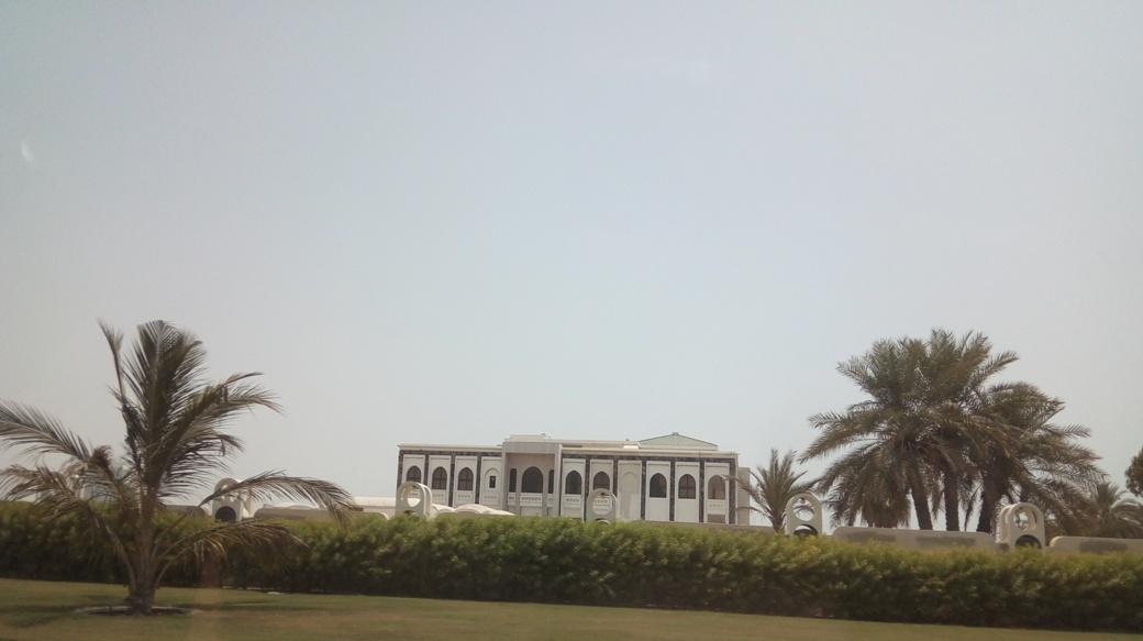 Снимка 3, Къщите - дворци на елита на Дубай