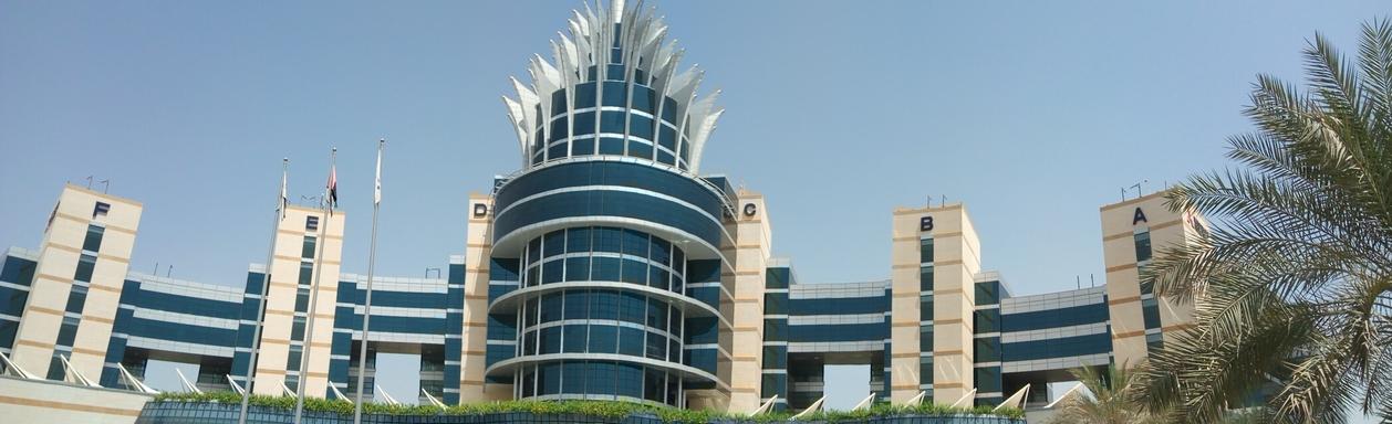 Снимка 3, Факти за Дубай