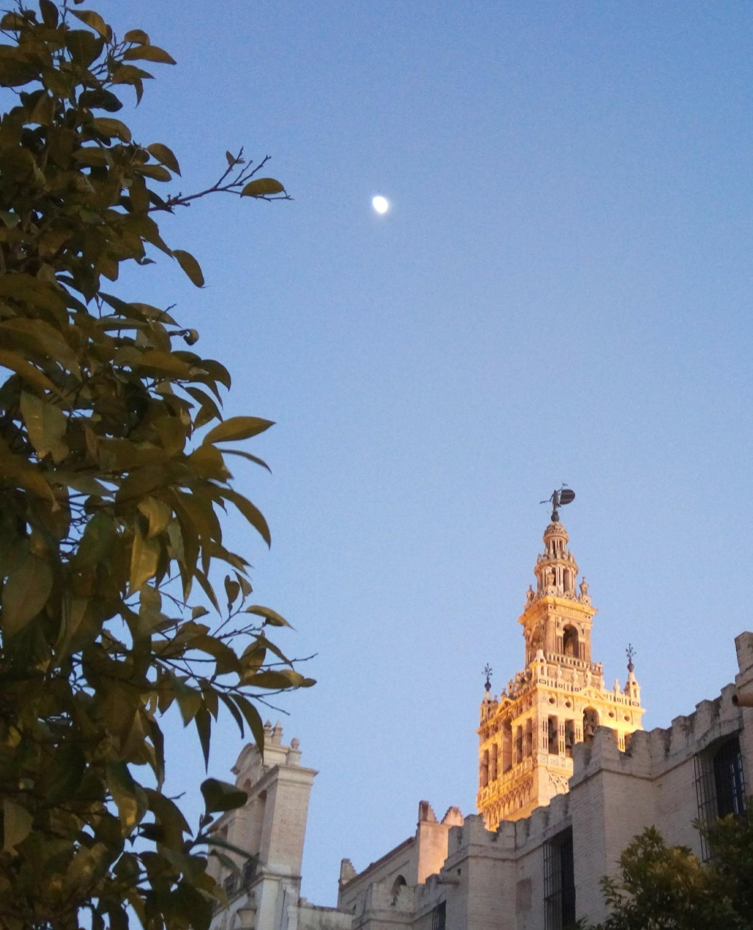 Снимка 17, Севиля, Испания