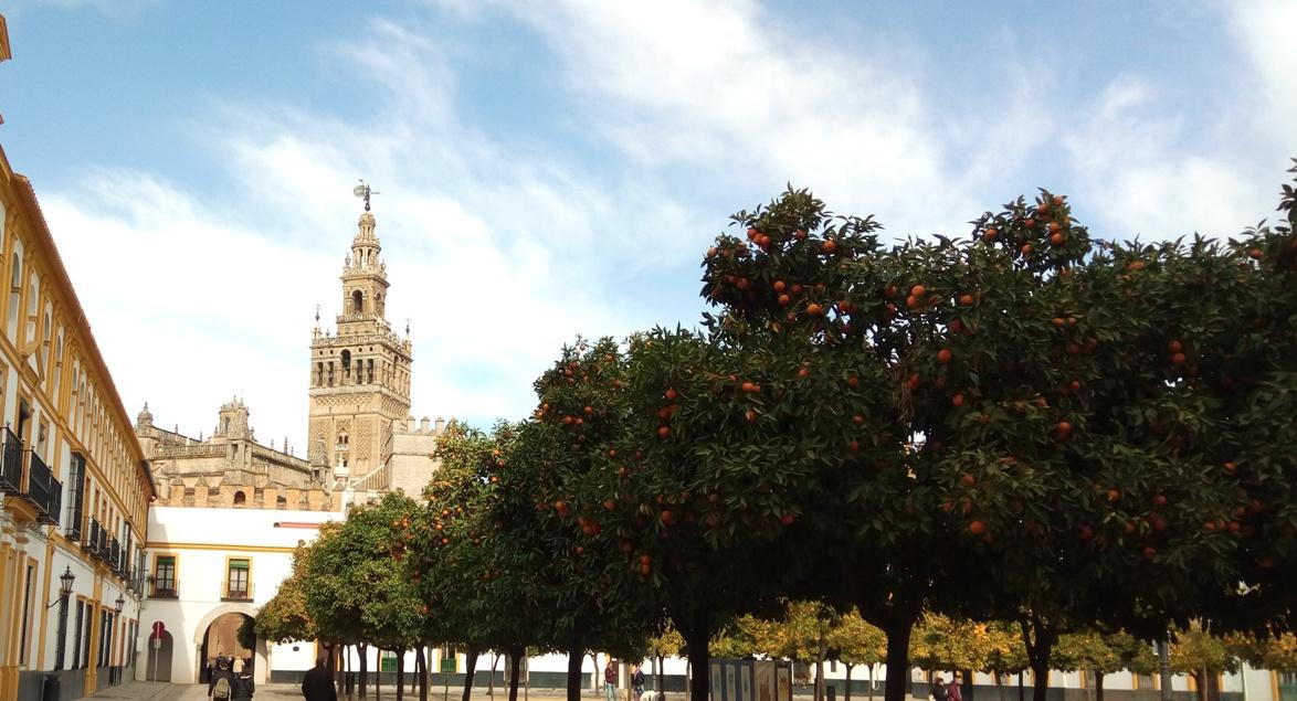 Снимка 19, Севиля, Испания