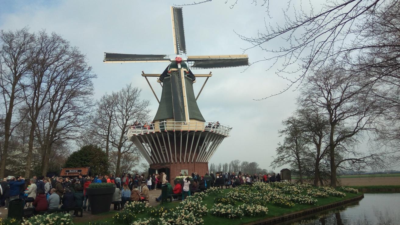 Снимка 10, Кукенхоф, Холандия