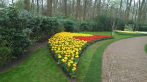 Снимка 29, Кукенхоф, Холандия