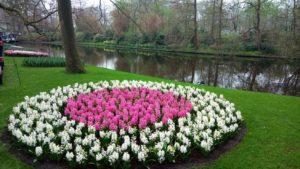 Снимка 43, Кукенхоф, Холандия