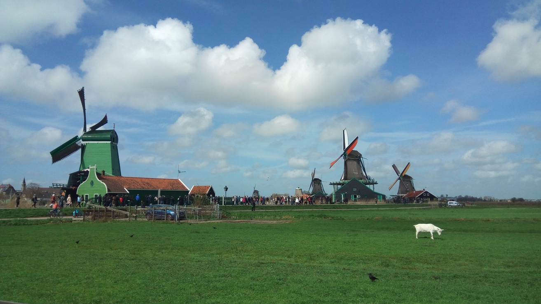 Снимка 15, Zaanse Schans, Холандия