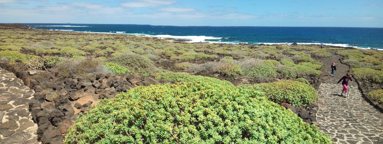 Крайбрежието до Хамеос дел агуа, Лансароте