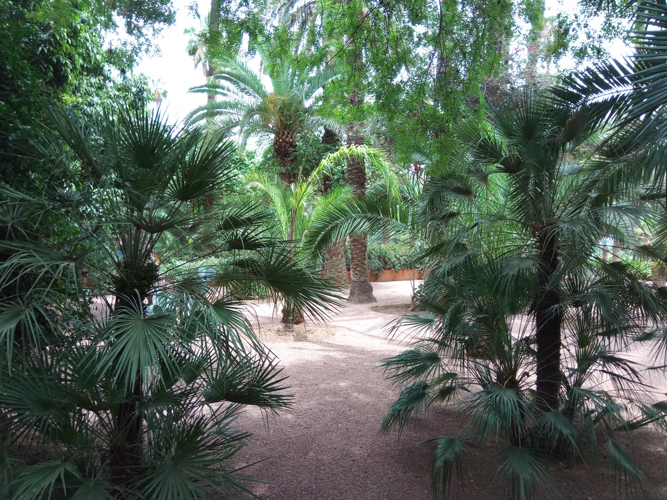 Градината на Ив Сен – Лоран, Маракеш, Мароко, picture 15
