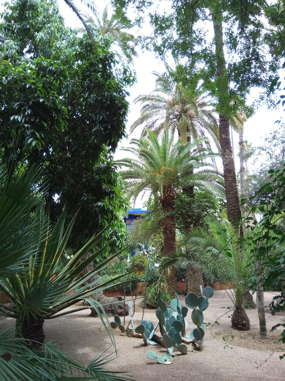 Градината на Ив Сен – Лоран, Маракеш, Мароко, picture 16