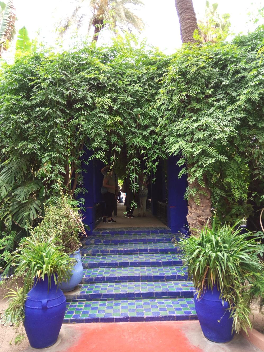 Градината на Ив Сен – Лоран, Маракеш, Мароко, picture 20