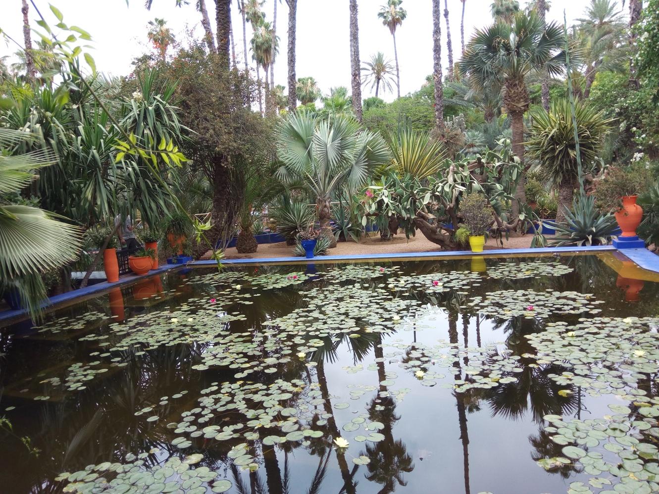 Градината на Ив Сен – Лоран, Маракеш, Мароко, picture 22