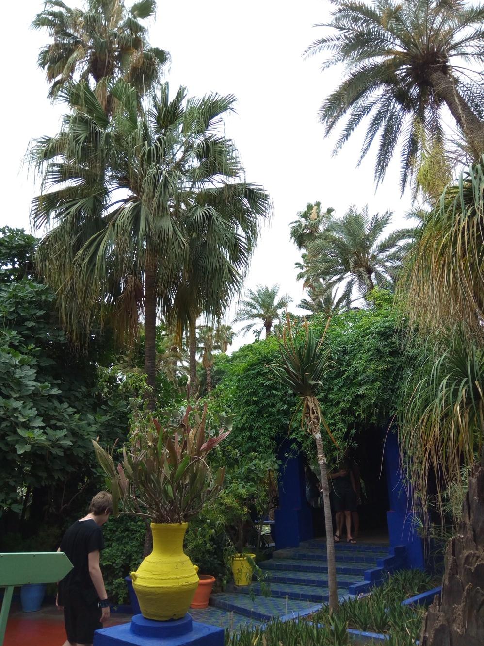Градината на Ив Сен – Лоран, Маракеш, Мароко, picture 25