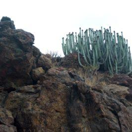 В търсене на Arco del Coronadero, Gran Canaria