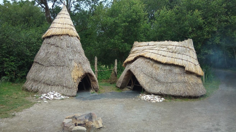 Снимка 2, Каменна ера, Irish National Heritage Park, Ирландия