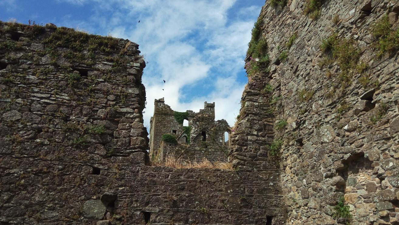 Снимка 4, Dunbrody Abbey, Ирландия