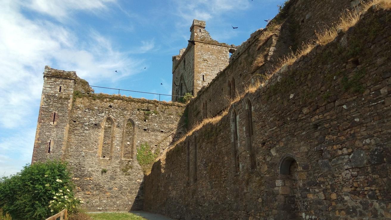 Снимка 5, Dunbrody Abbey, Ирландия