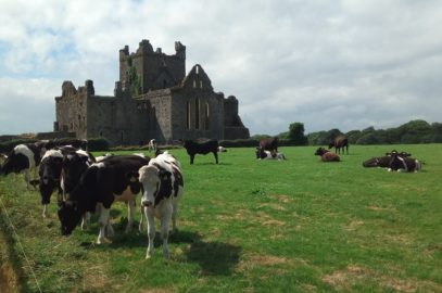 Dunbrody Abbey и Glendalough – щрих към Ирландската история
