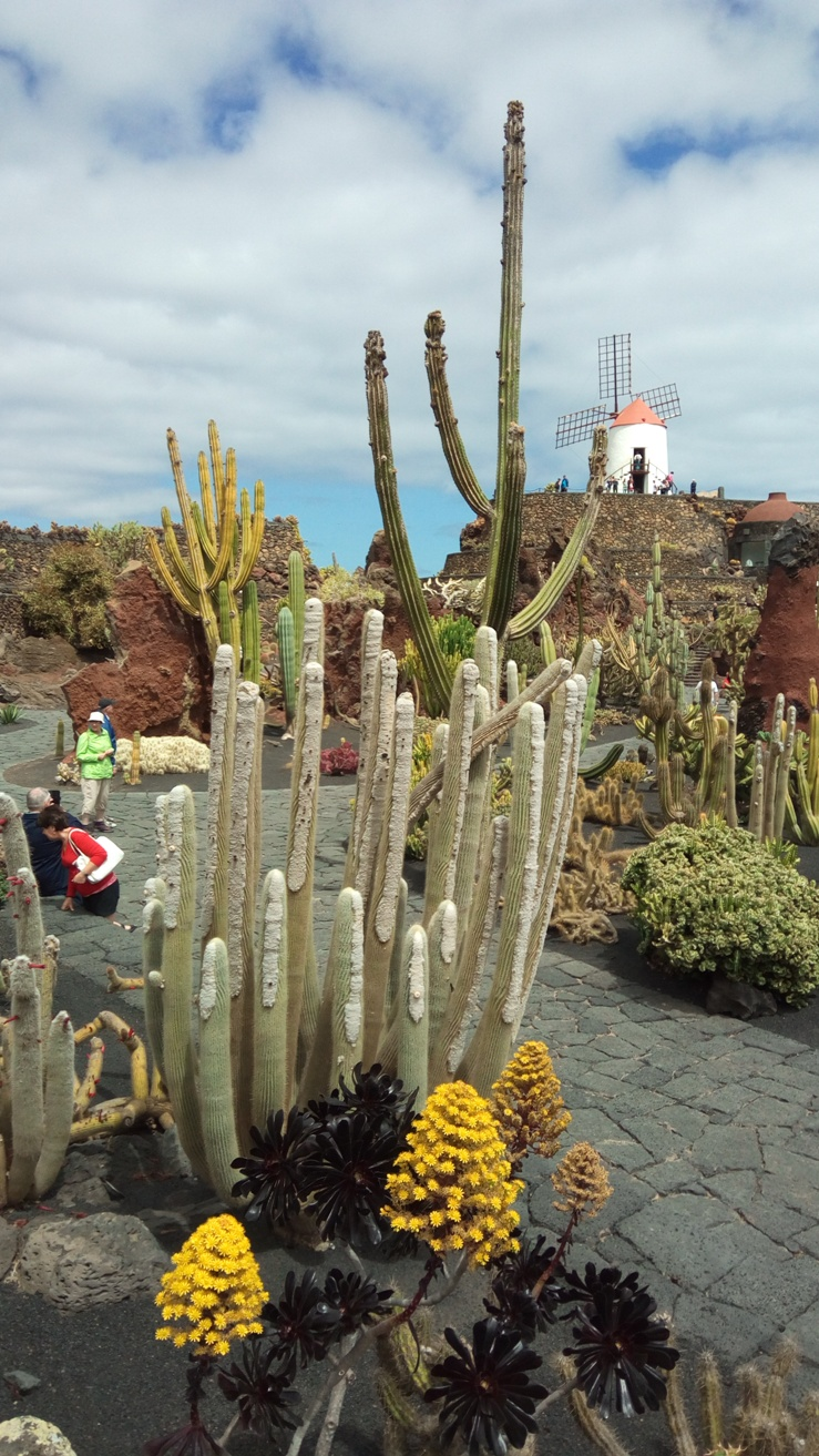 Jardin de Cactus, Lanzerote, Canary Islands, Spain