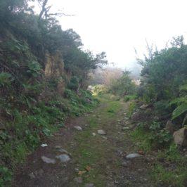 Водопадите на Телде, Гран Канария (Част 2)