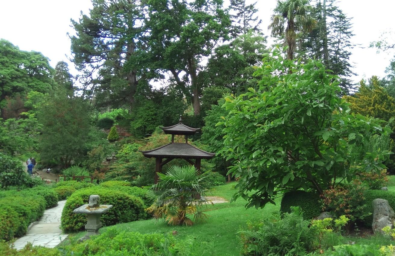 Иглед от Японската градина в Powerscourt Gardens, Ireland