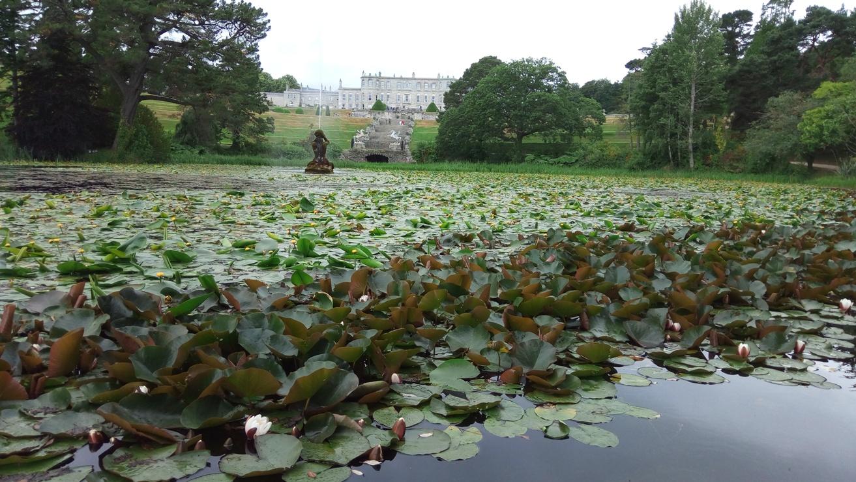 Езеро с водни цветя в Powerscourt Gardens, Ireland