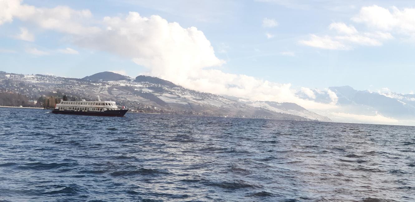 Чудесният пейзаж от палубата на кораба за Евиан, Франция