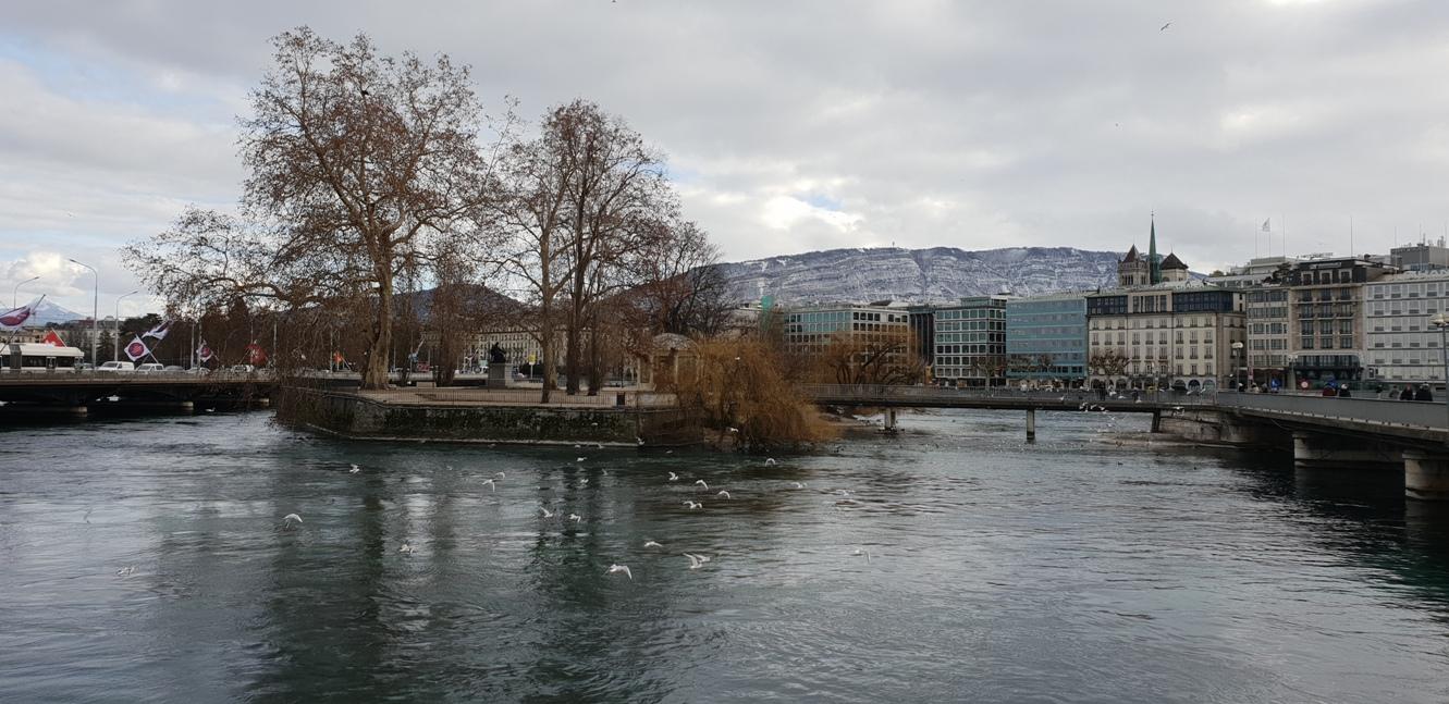 Снимка 17, Красотата на Женева, Женева, Швейцария