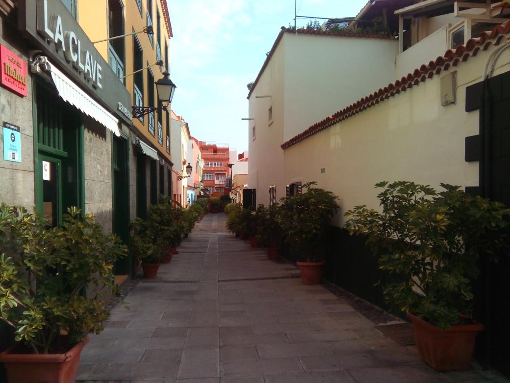 Снимка 9, Пуерто де ла Крус, Тенерифе