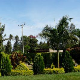 Между Екватора и Найроби, Кения