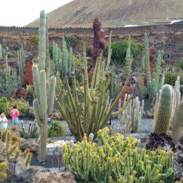 Лансароте, Испания – острова атракция, Част 3