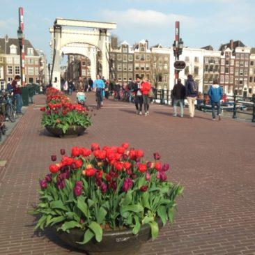 10 града за добри фамилни екскурзии в Европа