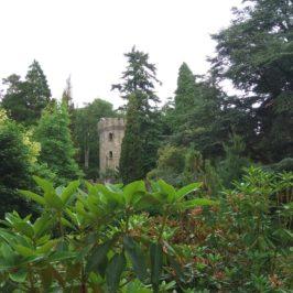 Powerscourt Gardens, Ирландия – едно над 150-годишно очарование