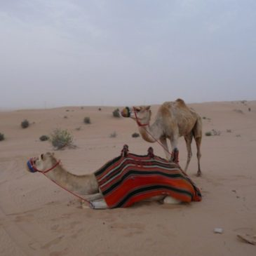 Дубай, ОАЕ – очарователна или прехвалена приказка (Част 3)